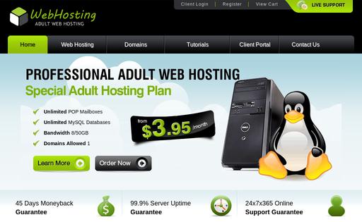 123 adult web hosting
