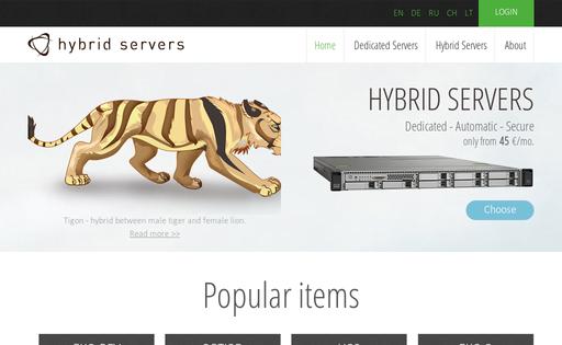 HybridServers