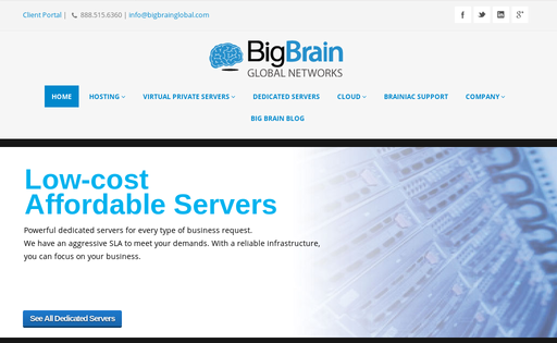 Big Brain Global Networks