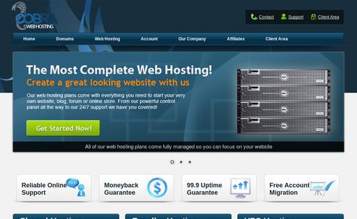 Cobra Web Hosting
