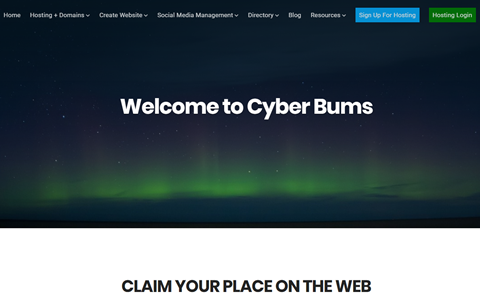 Cyber Bums