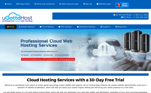 Eagle Pro Web Hosting Services