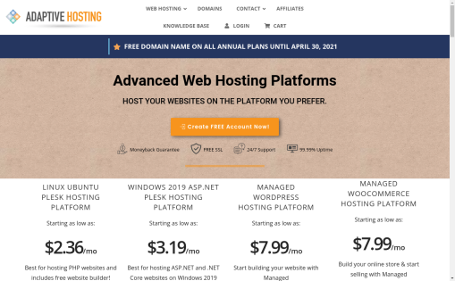 Adaptive Web Hosting