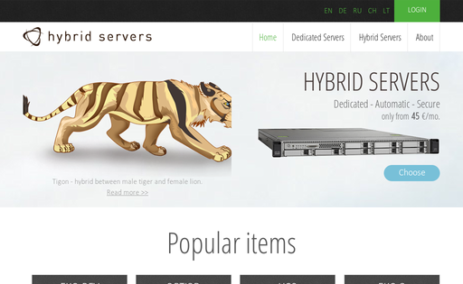 Hybrid-Servers